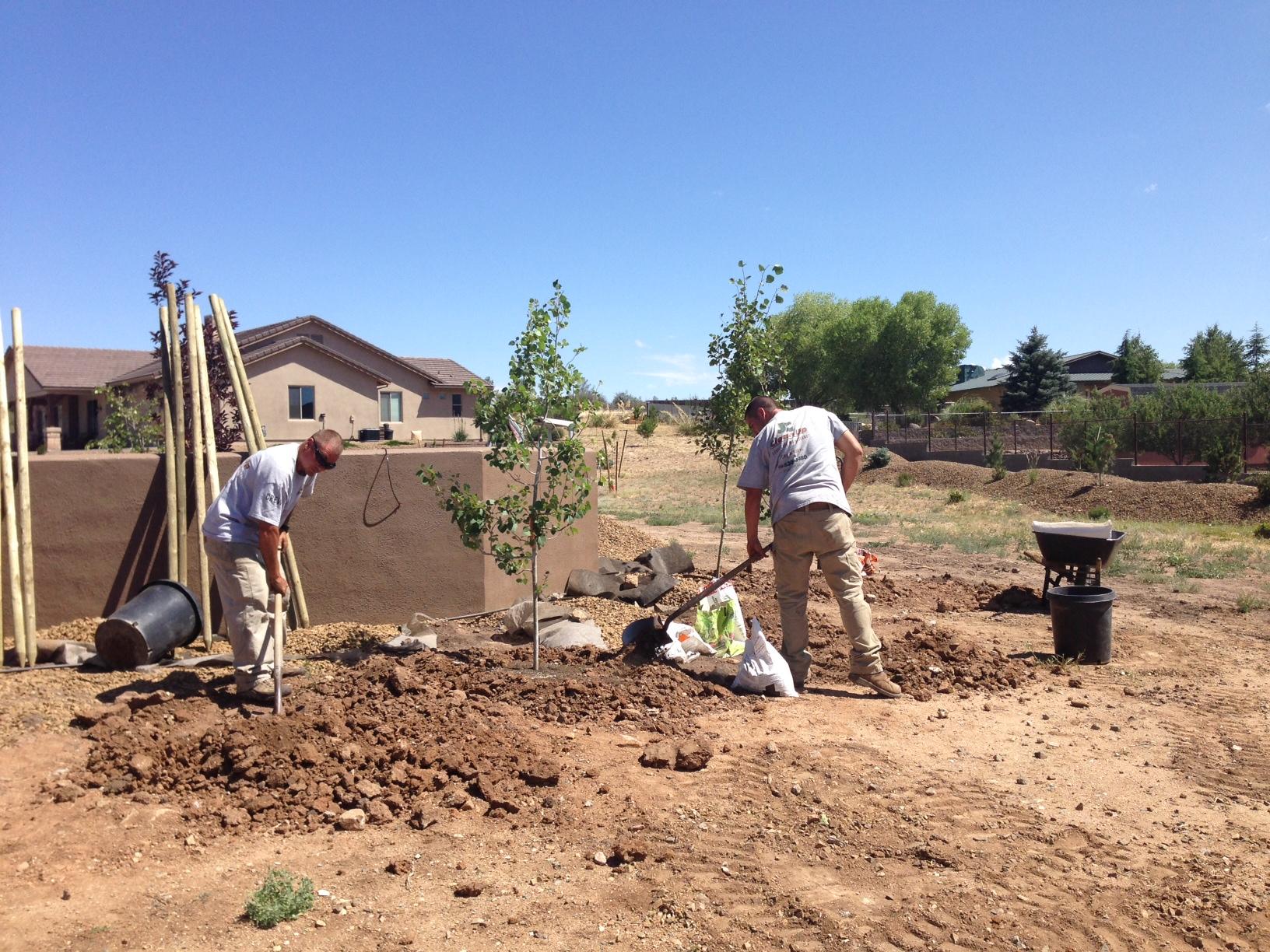 Photo 1d Prescott Landscape Professionals